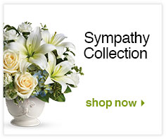 Sympathy Collection